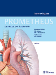 Prometheus Innere Organe
