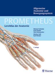 Prometheus Lernatlas der Anatomie - Anatomie und Bewegungssystem