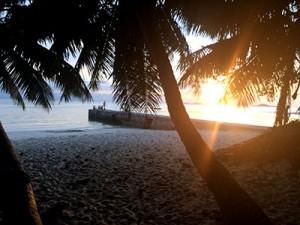 Die Strände auf den Seychellen sind malerisch.