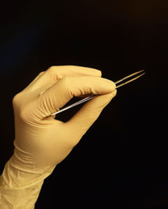 Beim Präparieren am Körperspender darf man als Medizin- oder Zahnmedizinstudent auch selbst zum Skalpell oder zur Pinzette greifen.