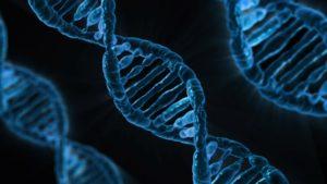 Proteine bestehen aus Aminosäuren.