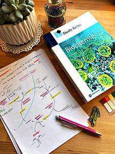 In Biochemie kommen Auswendiglerner ganz auf ihre Kosten.