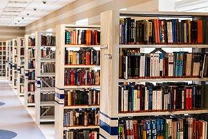 Die Literaturrecherche steht am Anfang jeder Doktorarbeit.