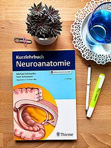 Die 2. Auflage des Kurzlehrbuchs Neuroanatomie (Thieme)