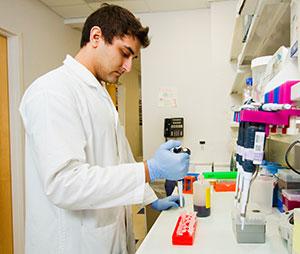 Viele Doktoranden stehen während des praktischen Teils ihrer Doktorarbeit im Labor.